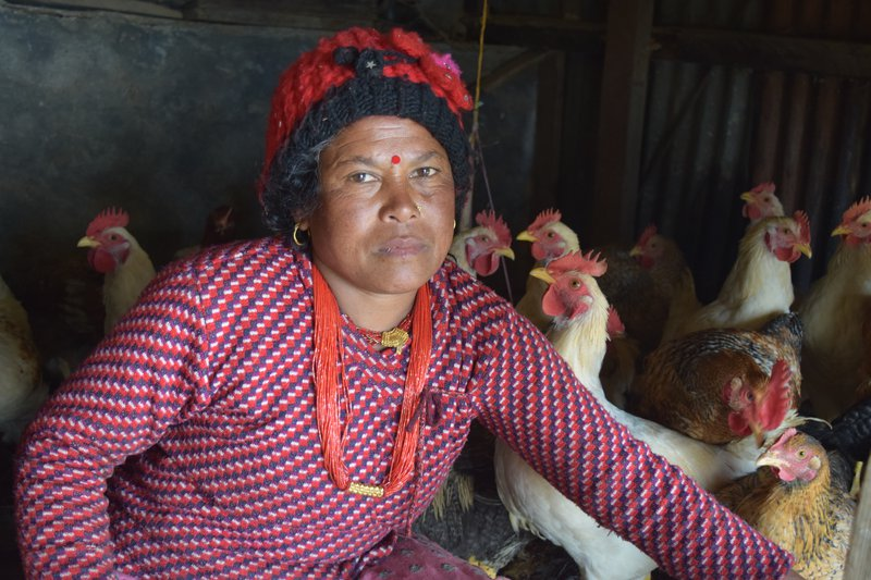 Mira Nepali of Suri village  poultry is for livlihood.jpg